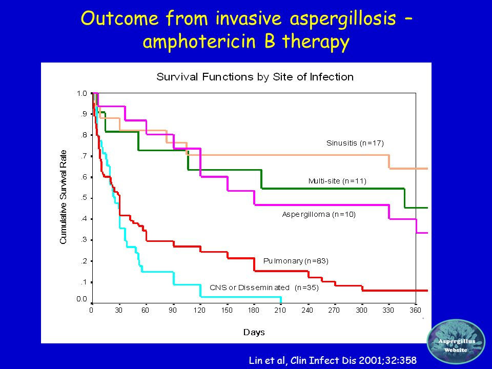 Outcome from invasive aspergillosis – amphotericin B therapy