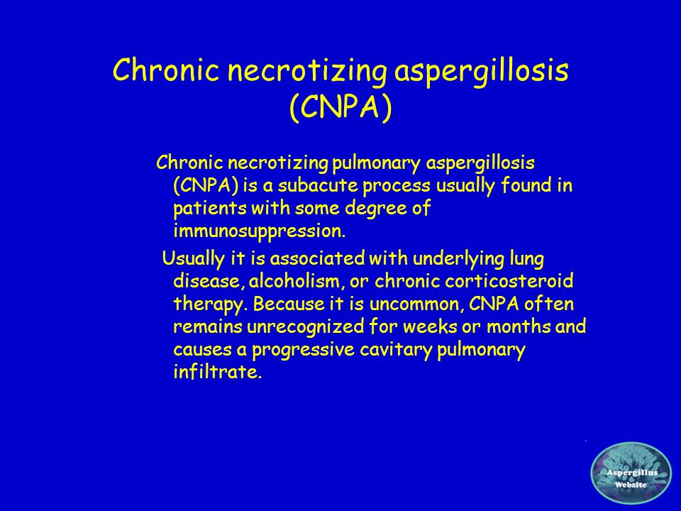 Chronic necrotizing aspergillosis (CNPA)