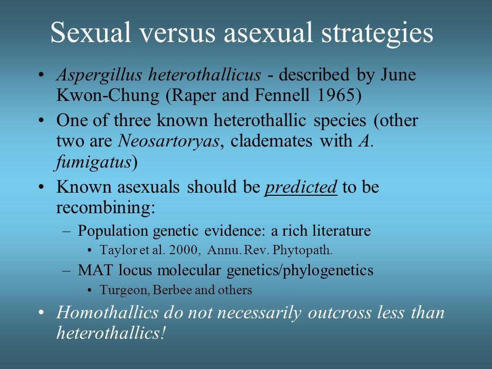 Sexual versus asexual strategies