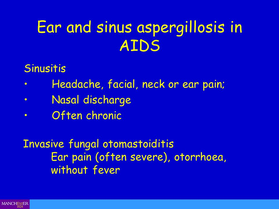 Ear and sinus aspergillosis in AIDS