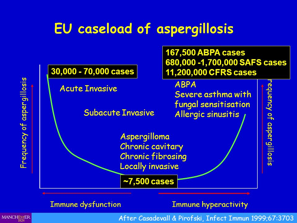 EU caseload of aspergillosis