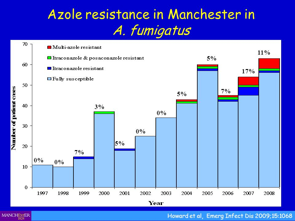 Azole resistance in Manchester in A. fumigatus