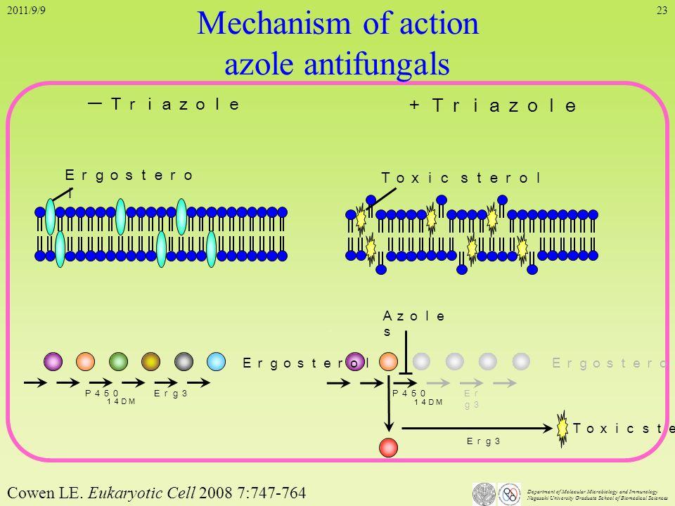 Cowen LE. Eukaryotic Cell 2008 7:747-764