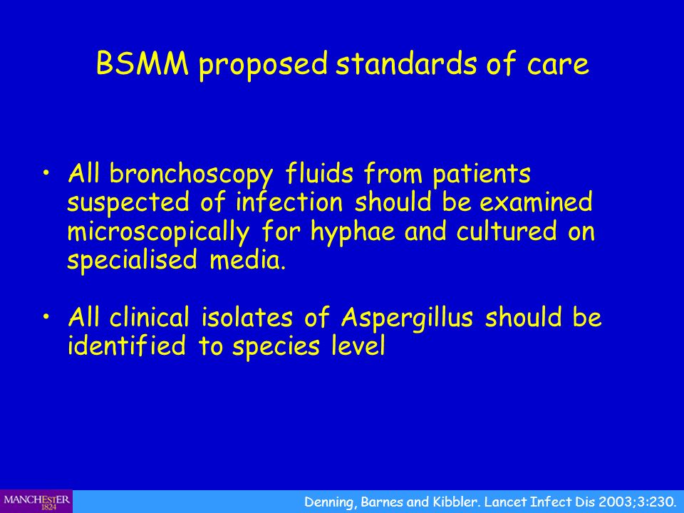 BSMM proposed standards of care