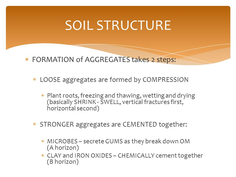 Soils and plant nutrition ppt video online download for Explain the formation of soil