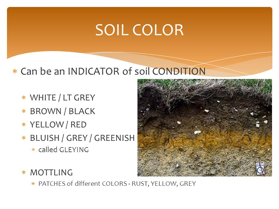 Soils and plant nutrition ppt video online download for Uses of soil in english