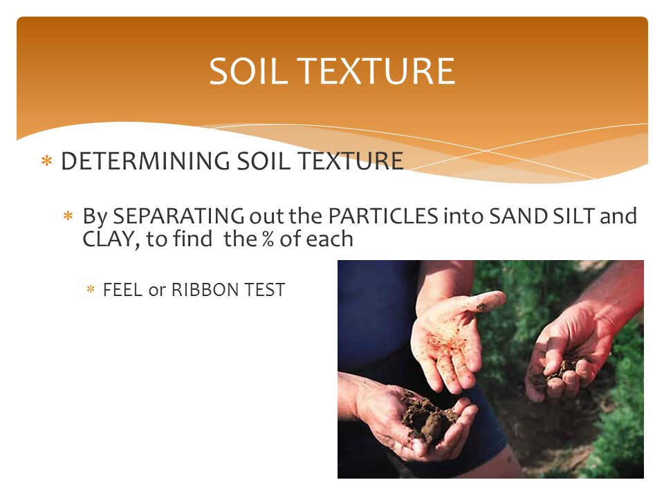 Soils and plant nutrition ppt video online download for Soil ribbon test