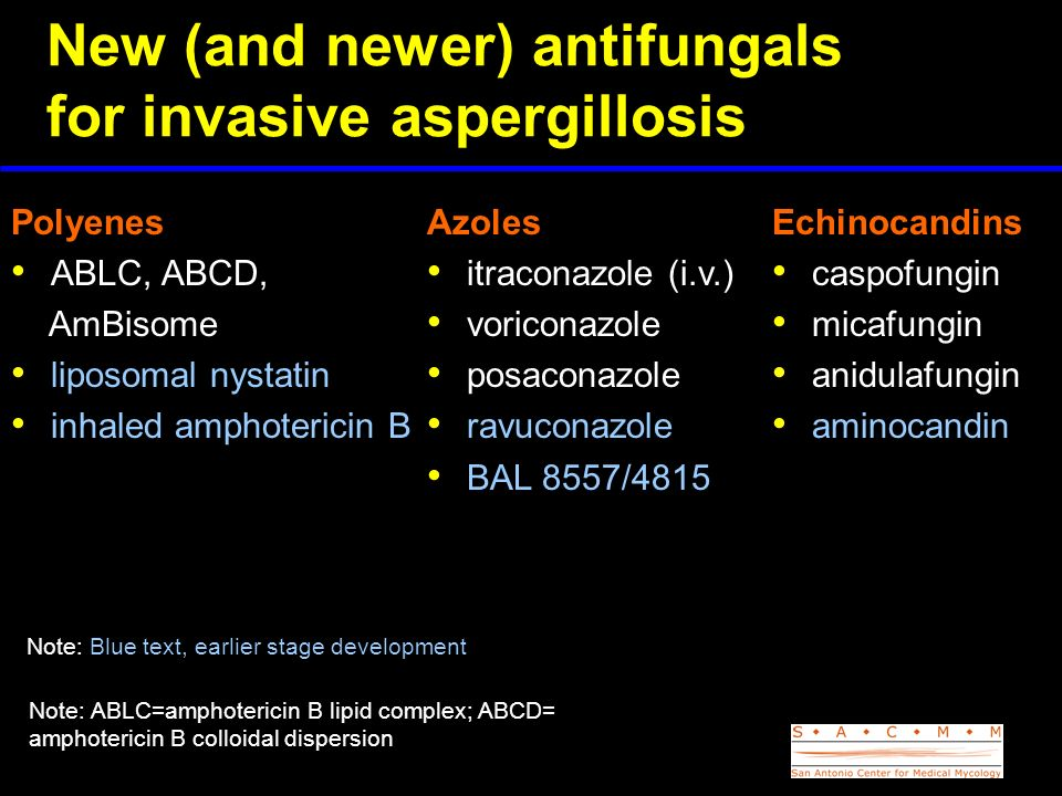 New (and newer) antifungals for invasive aspergillosis