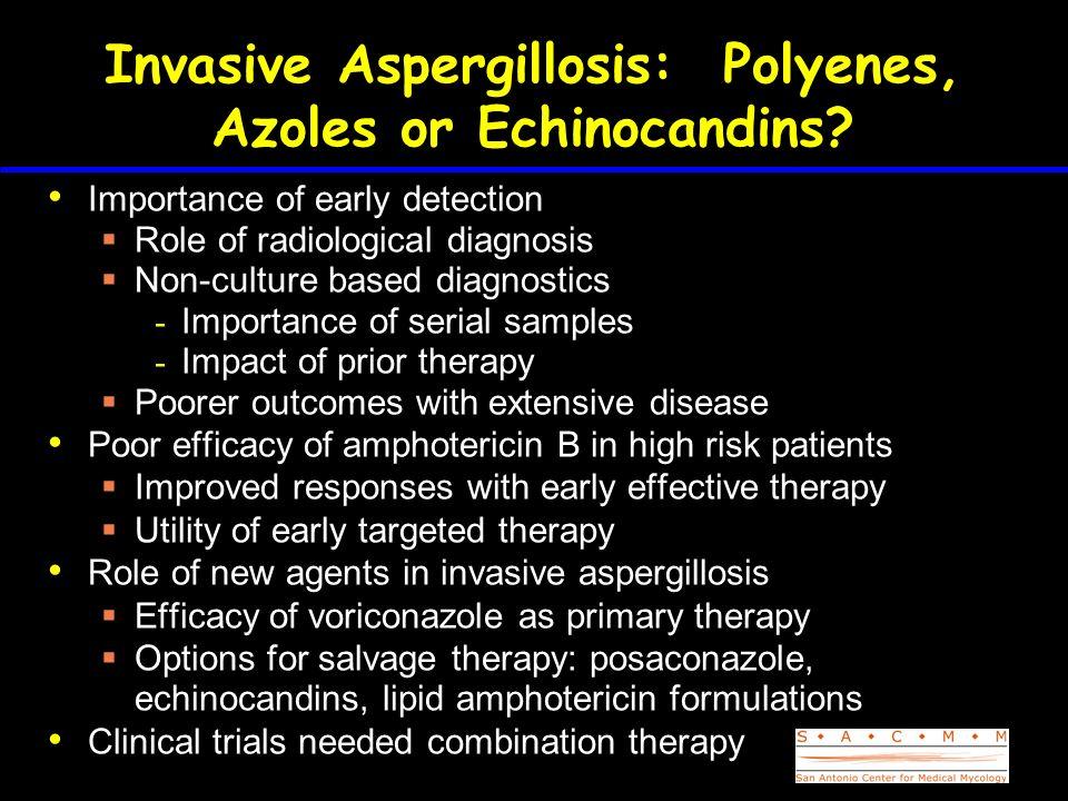 Invasive Aspergillosis: Polyenes, Azoles or Echinocandins