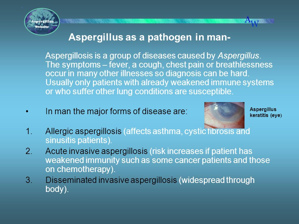 Aspergillus as a pathogen in man-