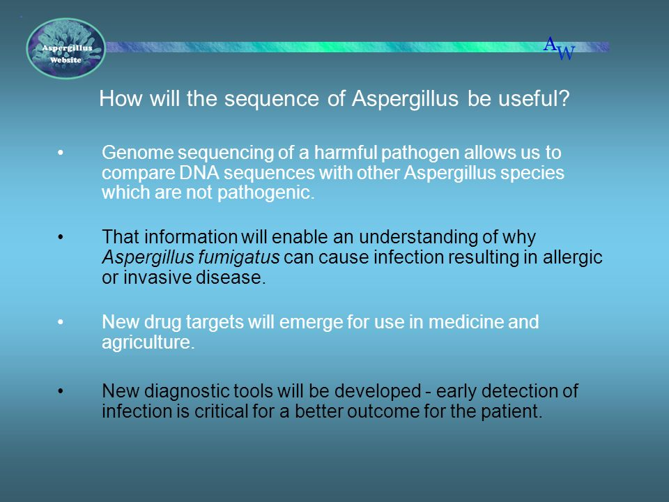 How will the sequence of Aspergillus be useful