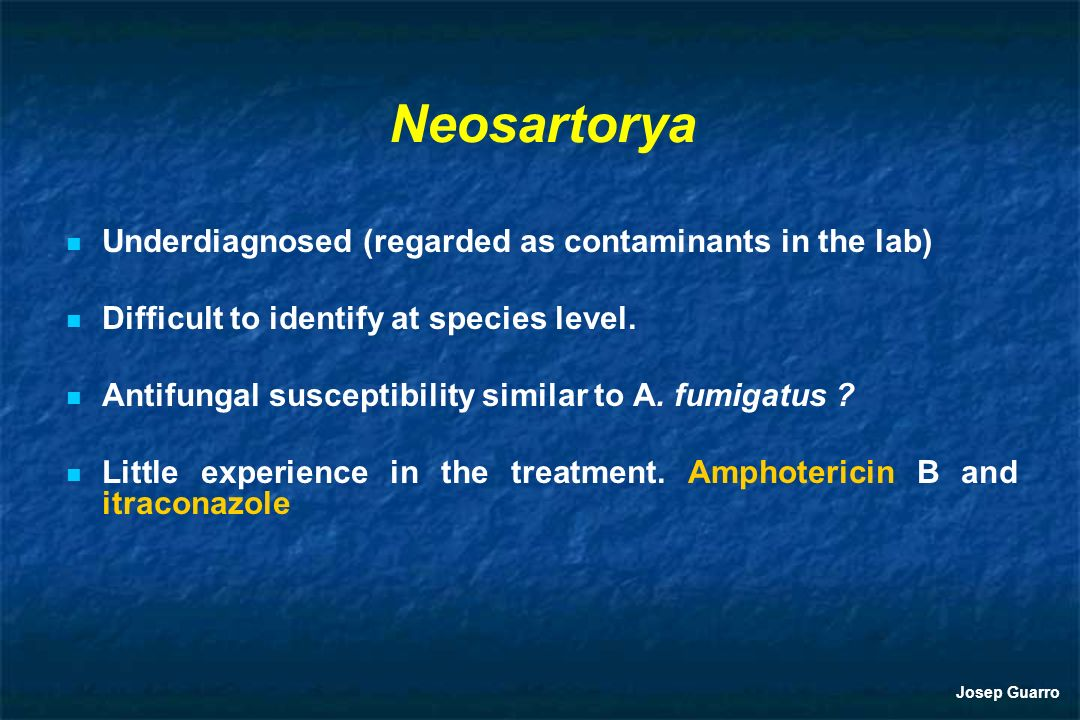 Neosartorya Underdiagnosed (regarded as contaminants in the lab)