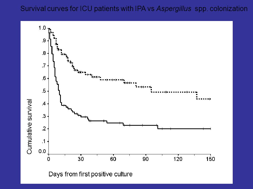 Survival curves for ICU patients with IPA vs Aspergillus spp