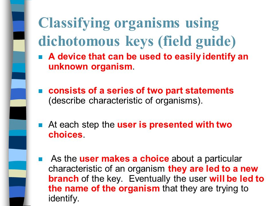 describe how characteristics help to classify Lists and structure of governments describe characteristics of the residents of recognized and generally present no serious problem of classification.