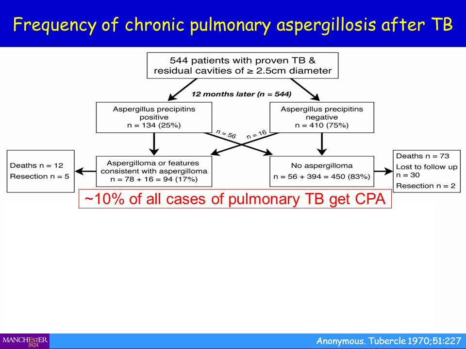 Frequency of chronic pulmonary aspergillosis after TB