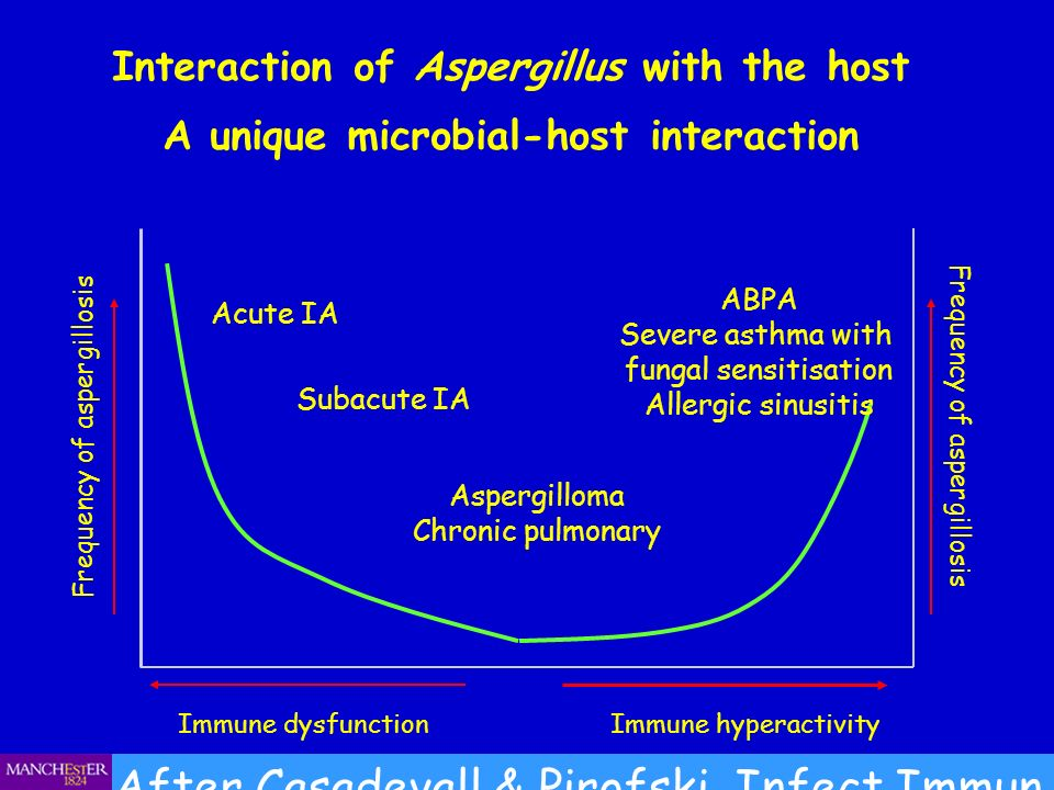 After Casadevall & Pirofski, Infect Immun 1999;67:3703