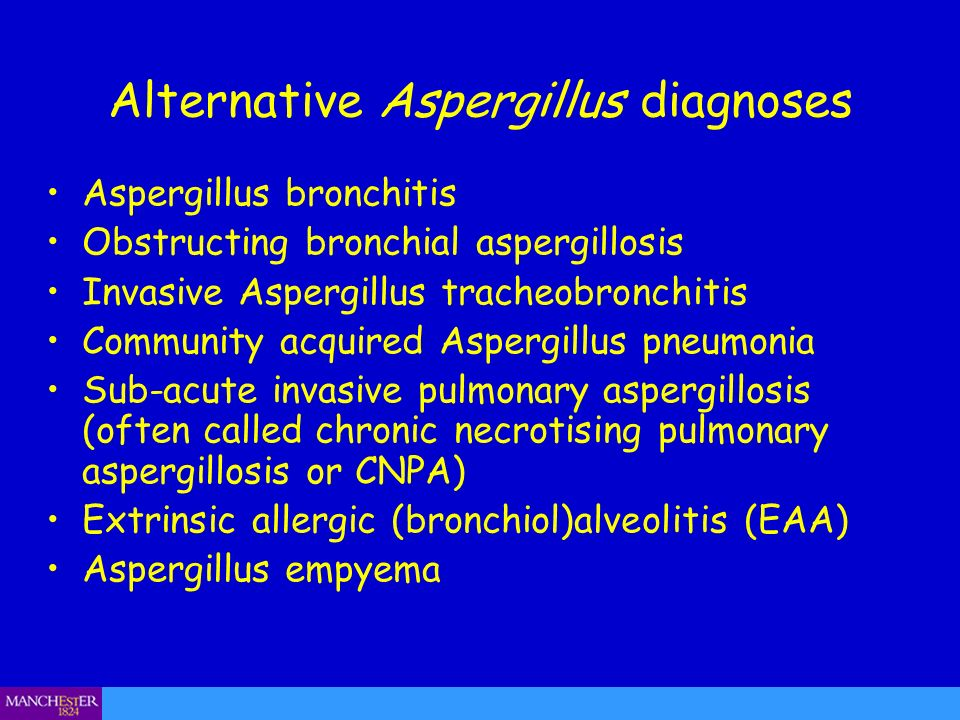 Alternative Aspergillus diagnoses