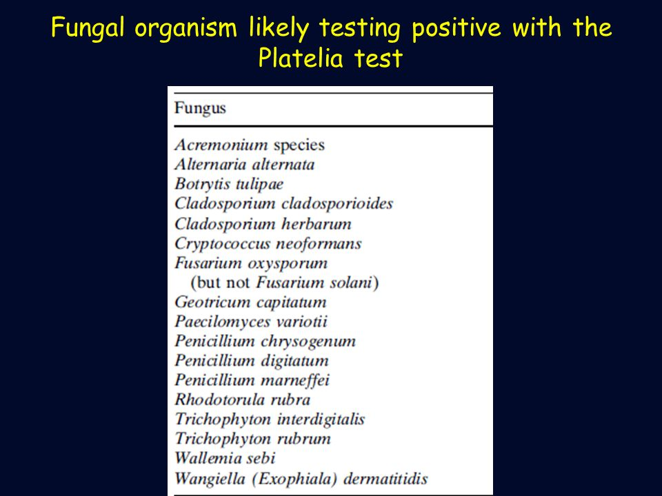 Fungal organism likely testing positive with the Platelia test
