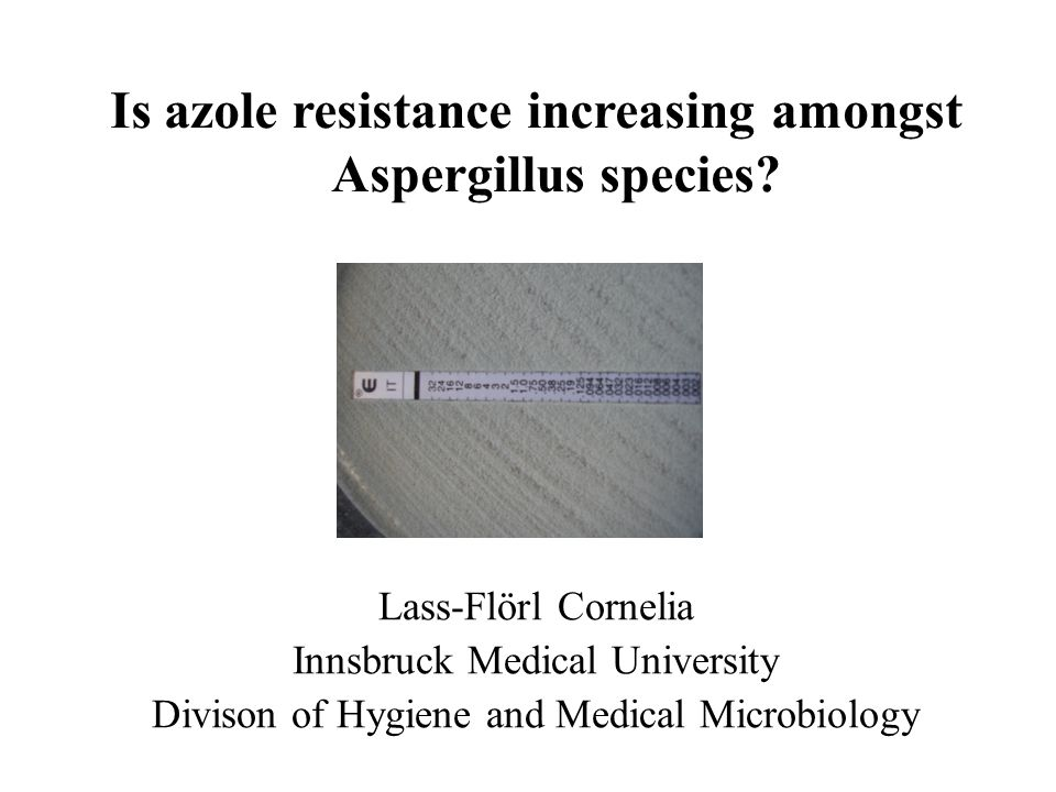 Is azole resistance increasing amongst Aspergillus species