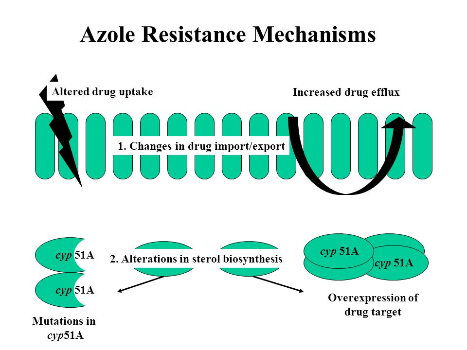 Azole Resistance Mechanisms