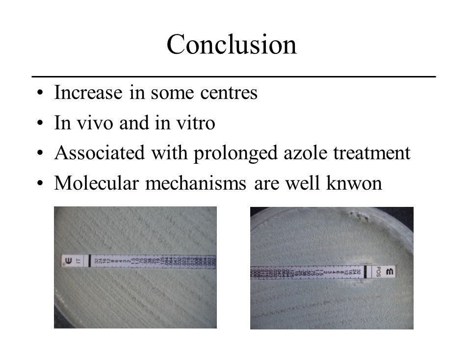 Conclusion Increase in some centres In vivo and in vitro