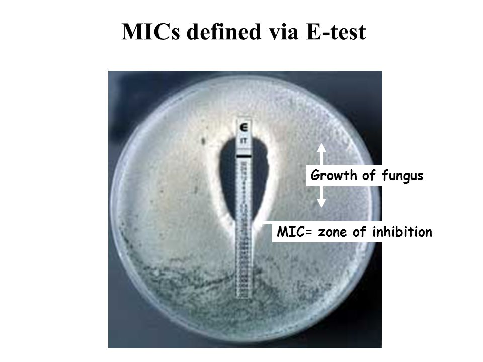 MICs defined via E-test