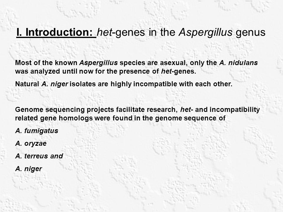 I. Introduction: het-genes in the Aspergillus genus