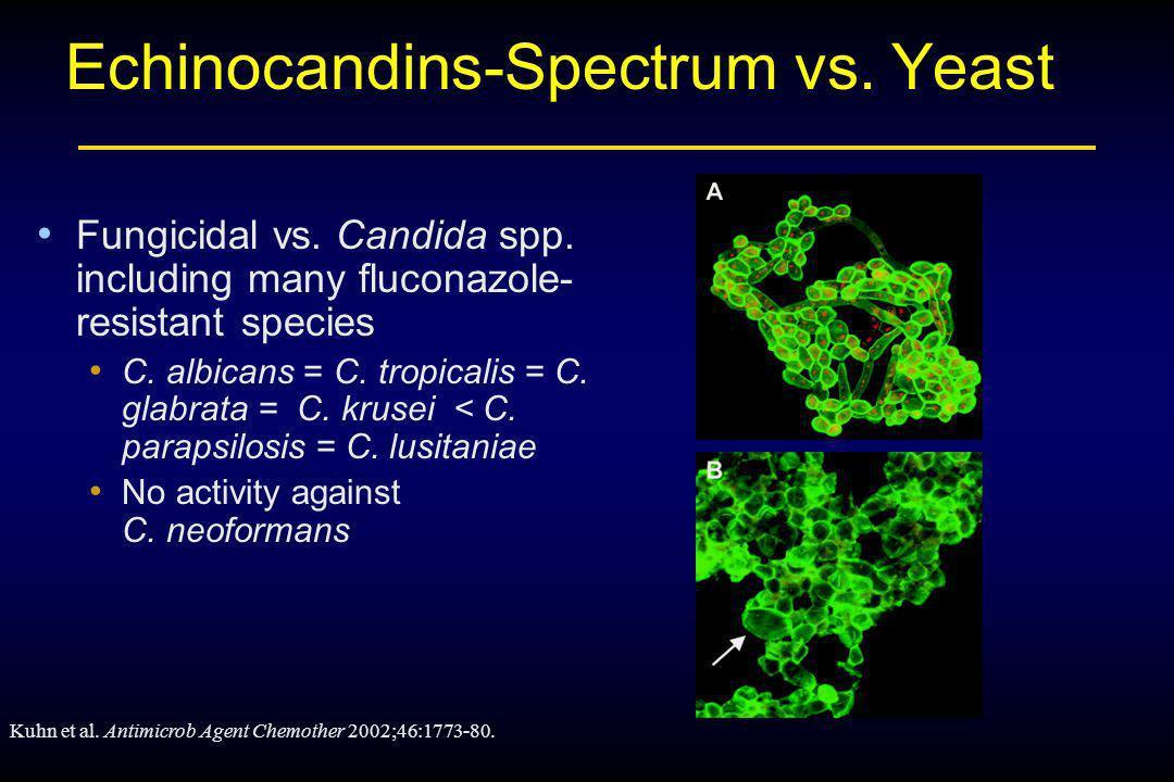 Echinocandins-Spectrum vs. Yeast
