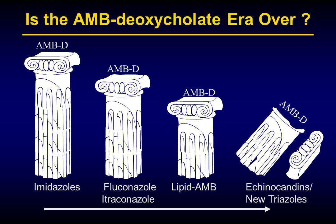Is the AMB-deoxycholate Era Over