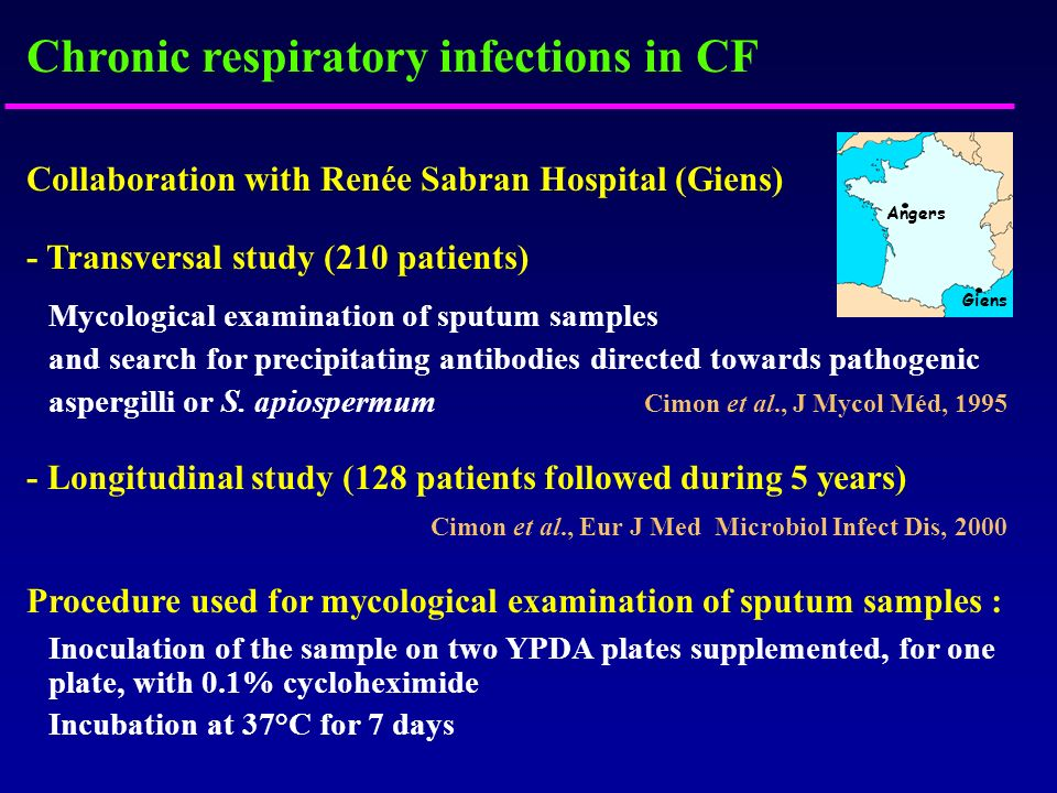 Chronic respiratory infections in CF