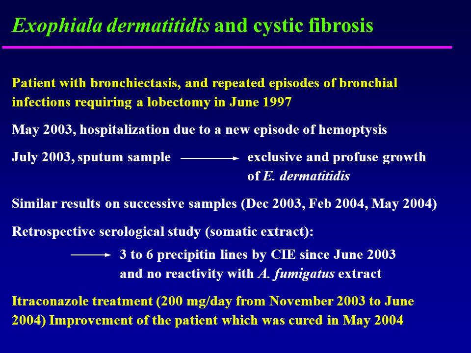 Exophiala dermatitidis and cystic fibrosis