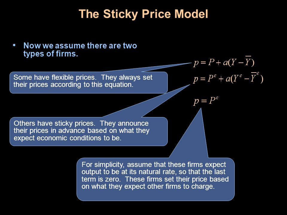 The Sticky Price Model Now we assume there are two types of firms.