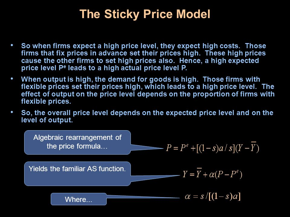 The Sticky Price Model