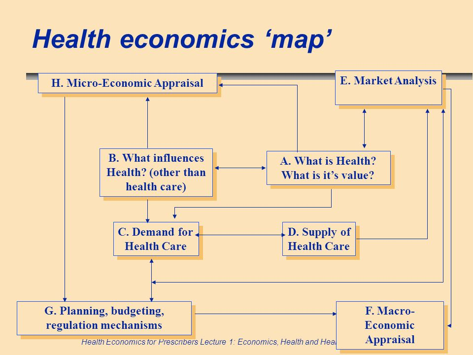 Health economics 'map'