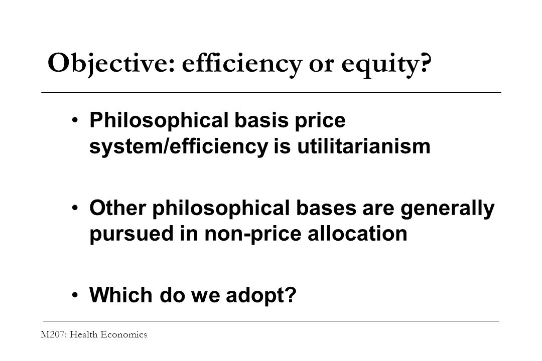 Objective: efficiency or equity