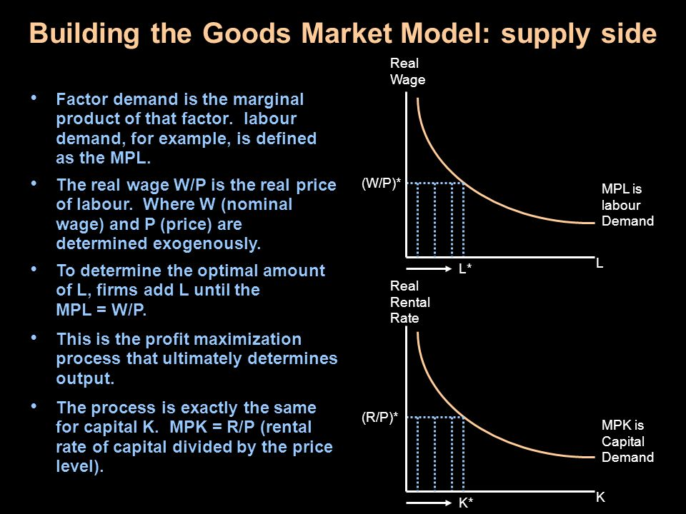 Building the Goods Market Model: supply side