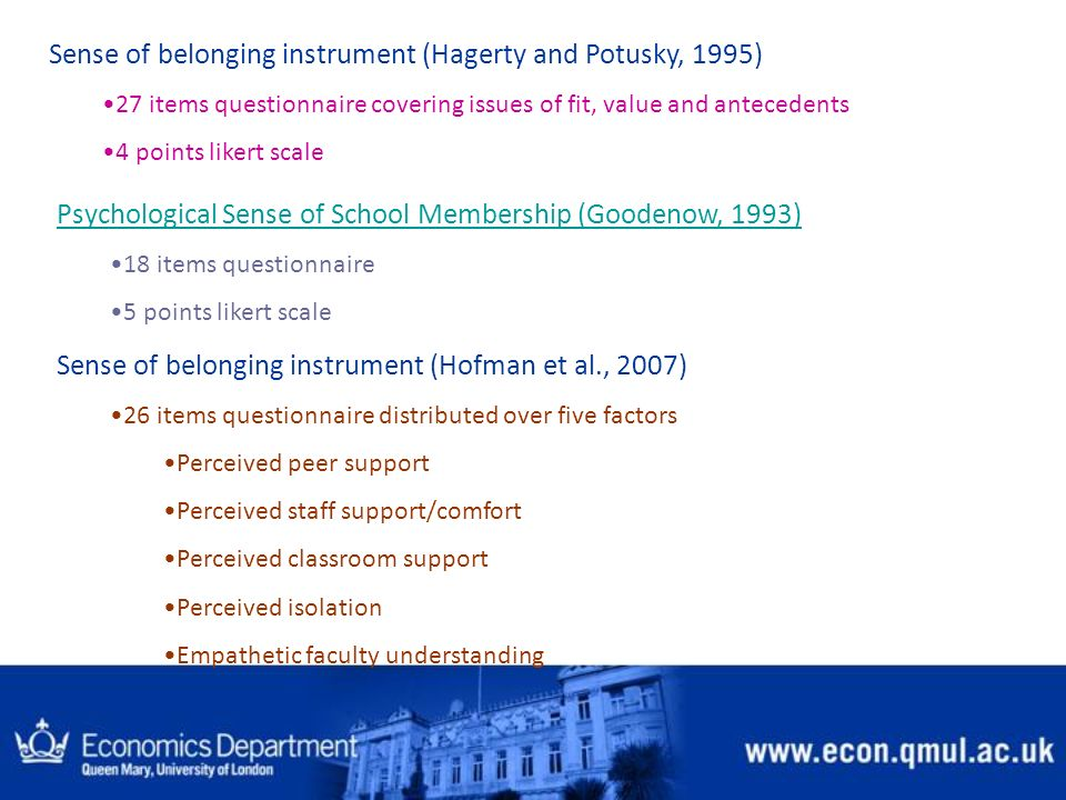 Sense of belonging instrument (Hagerty and Potusky, 1995)