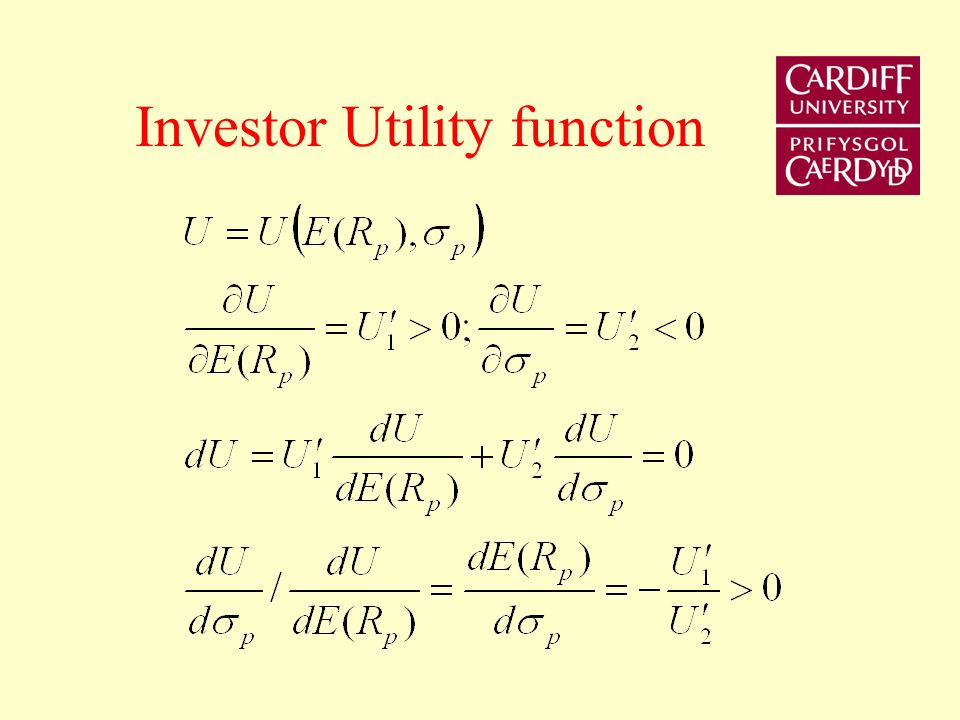 Investor Utility function