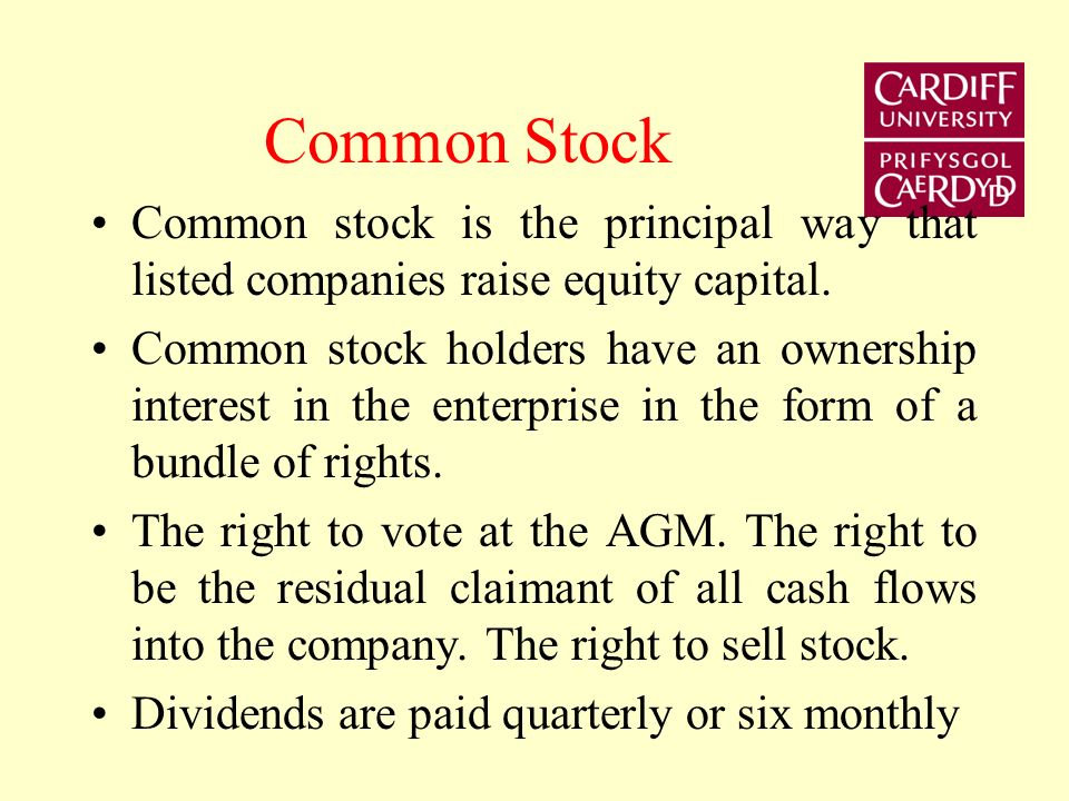 Common Stock Common stock is the principal way that listed companies raise equity capital.