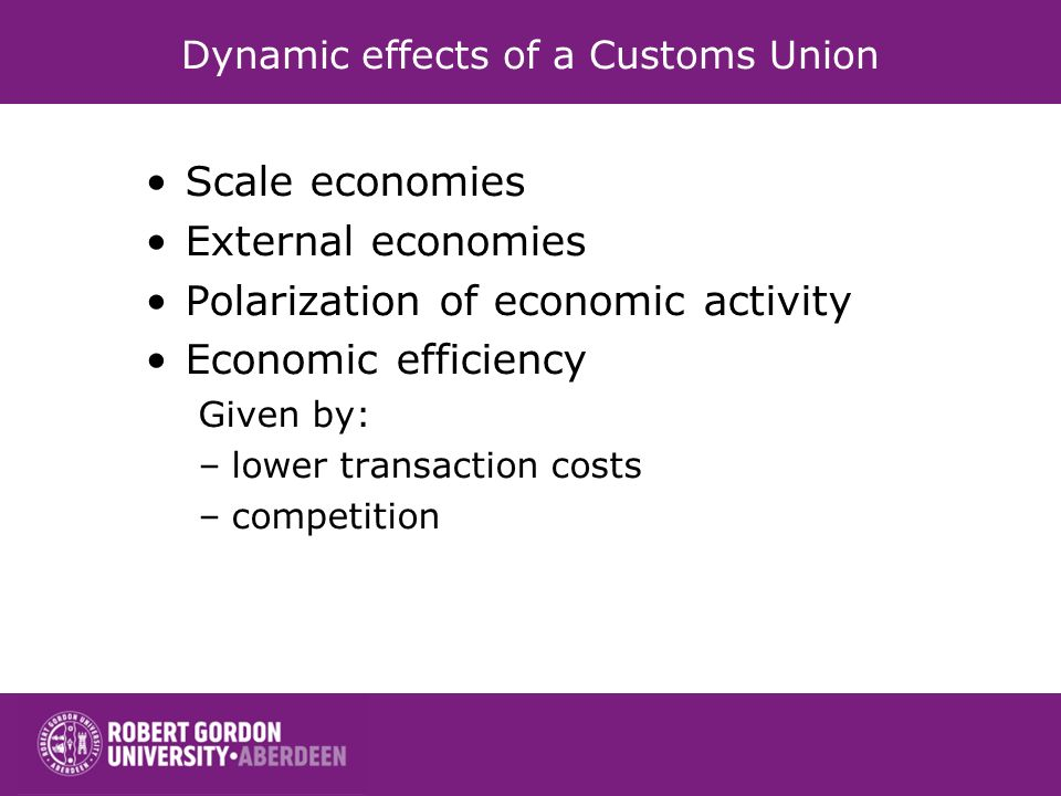 Dynamic effects of a Customs Union