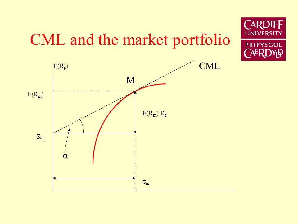 CML and the market portfolio