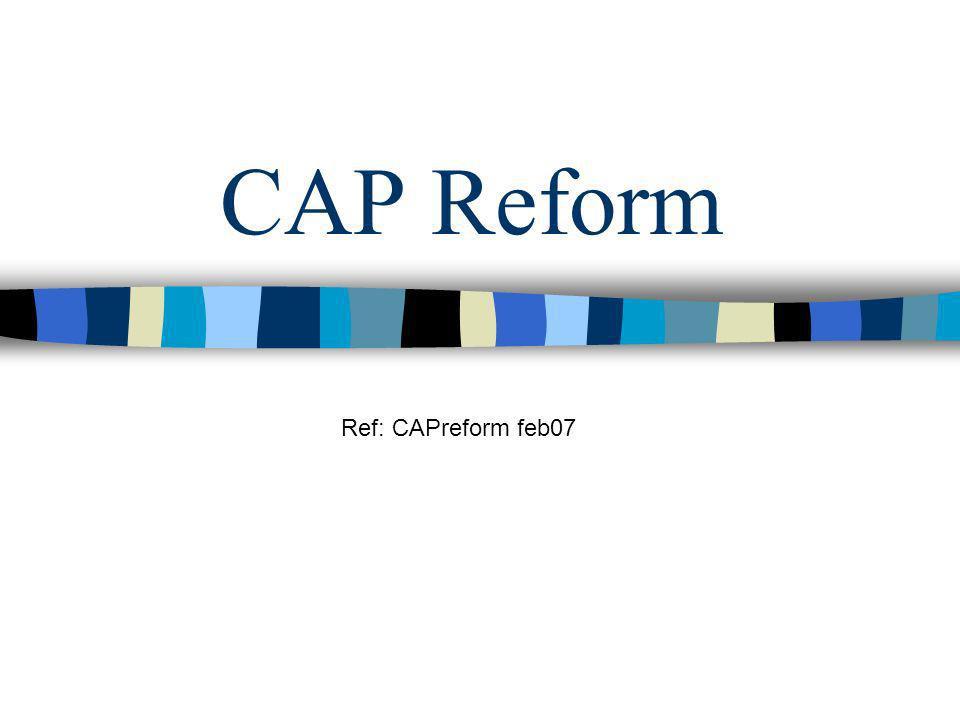 CAP Reform Ref: CAPreform feb07
