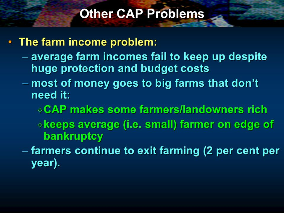 Other CAP Problems The farm income problem: