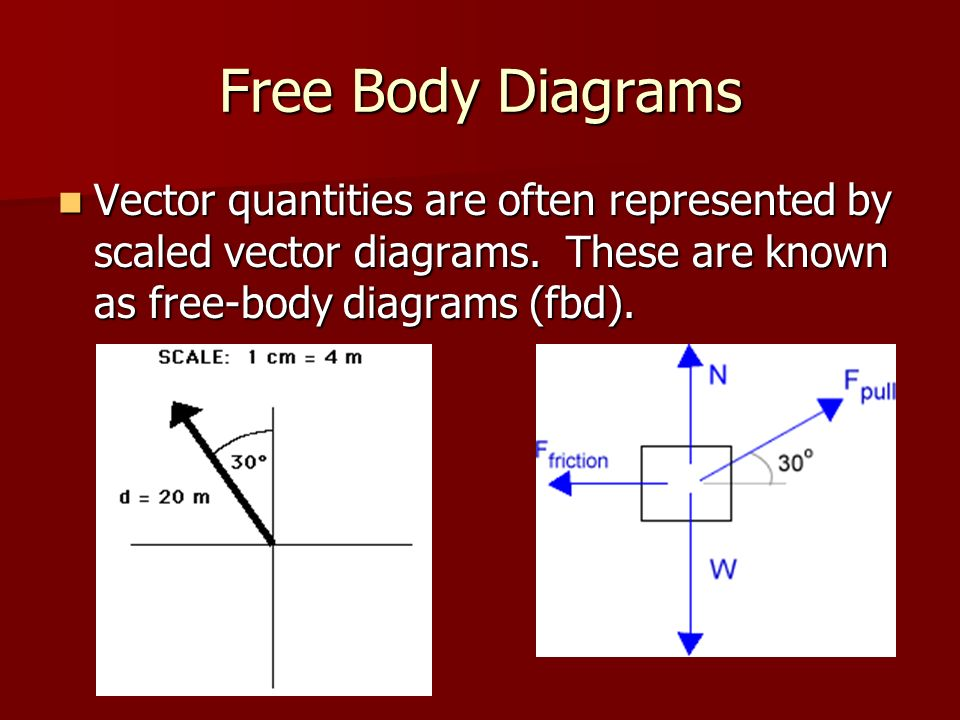 What is a vector what vector quantities are studied in this lab