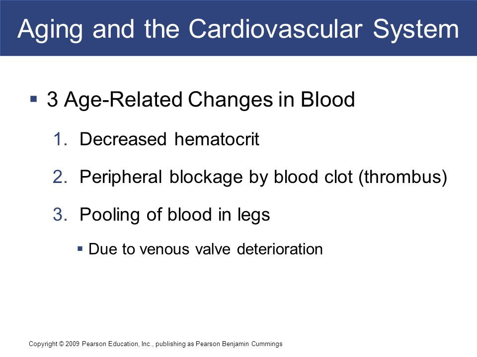 Aging changes in the heart and blood vessels