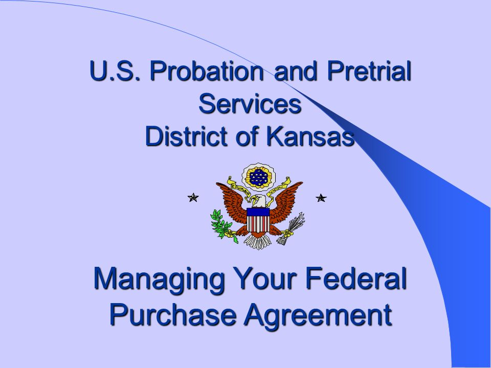 the national probation service and modernisation essay Free probation papers, essays community service shock probation and the nature of the modern american prison system - the nature of the modern.