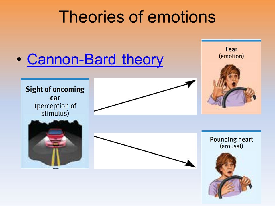 Psychological Theories of Stress