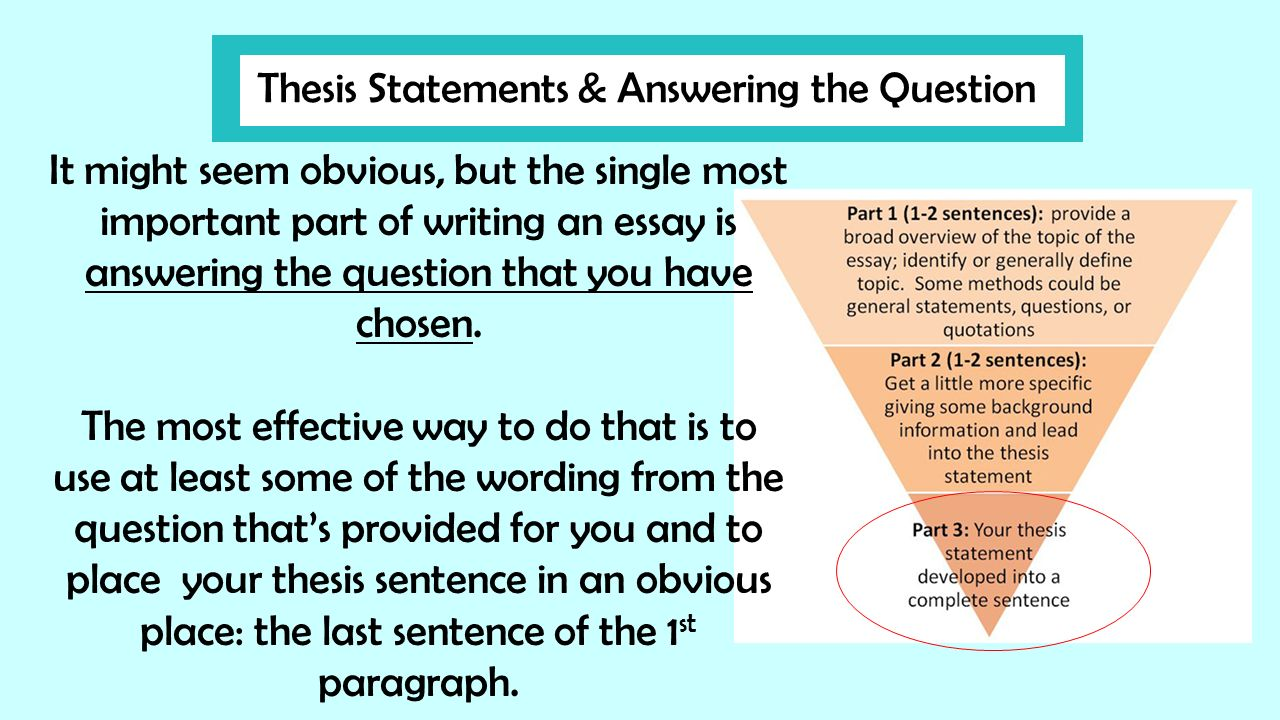 when answering an essay question it is important to Why do instructors give essay exams and explain why it is important essay exams challenge you to come up with don't just answer the first essay question.