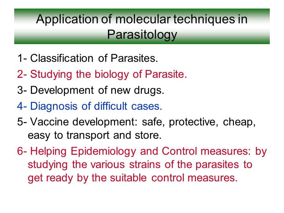 würmer parasiten bei menschen chefkoch.jpg