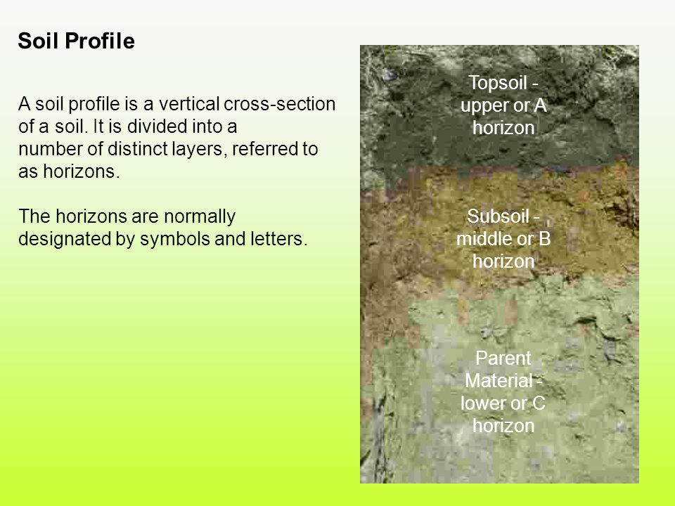 Soil origin and development ppt video online download for Soil 8 letters